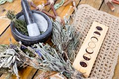 Herb Witch mortar and pestle with moon phases and dried herbs. On rustic wooden background royalty free stock image