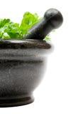 herb zgniatanie Obraz Royalty Free