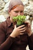 Herba vulgaris del timo del timo Fotografie Stock Libere da Diritti