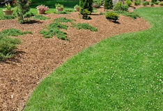 Herbaceous Border. Herbaceous broder with wood chip mulch Stock Photography