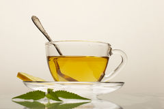 Herbaceous tea Stock Photos