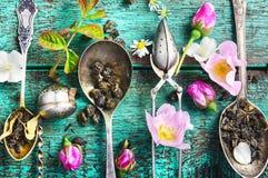 Herbaciana łyżka i ziołowa herbata Zdjęcia Stock