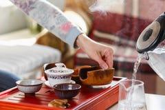 Herbaciana ceremonia Kobieta nalewa gorącą wodę w teapot zdjęcie royalty free