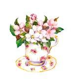 Herbaciana filiżanka z okwitnięcie menchiami kwitnie wiśni, jabłko, Sakura akwarela ilustracji