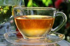 Herbaciana filiżanka. Obraz Stock