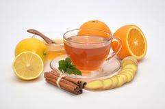 Herbaciana imbirowa cytryna Fotografia Stock
