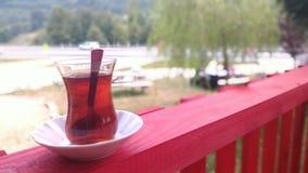 Herbaciana przerwa na drodze Zdjęcie Royalty Free