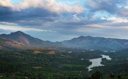Herbaciane plantacje w wzgórzach obraz royalty free