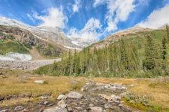 Herbacianego domu widok, Jeziorny Louise, Banff park narodowy Fotografia Stock