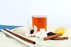 Herbacianej filiżanki acessories ustawiający Fotografia Royalty Free