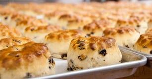 Herbaciani ciastka na tacy Obraz Royalty Free