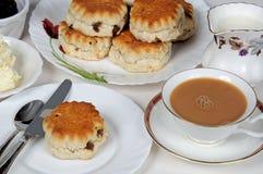 herbaciani owocowi scones Obrazy Royalty Free