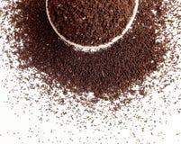 Herbaciani Surowi liście Zdjęcie Stock