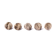 herbaciany biel Zdjęcie Stock
