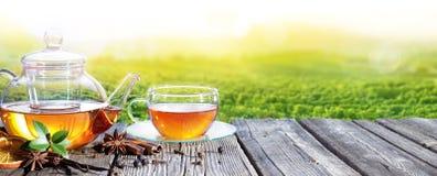 Herbaciany czas Z plantacją herbata Obraz Royalty Free