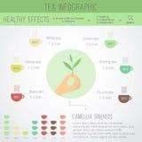 Herbaciany czasu infographics Obraz Royalty Free