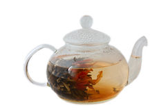 Herbaciany garnek Zdjęcie Stock