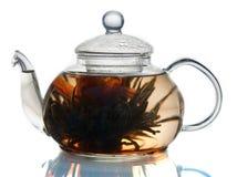 Herbaciany garnek Obrazy Royalty Free