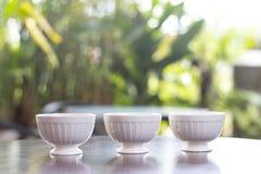 Herbaciany garnek z herbatą i filiżanką wyśmienicie Fotografia Stock