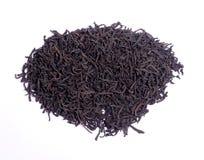Herbaciany liść Fotografia Stock
