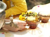 Herbaciany przyjęcie outdoors w wiośnie Obrazy Royalty Free
