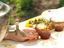 Herbaciany przyjęcie outdoors w wiośnie Zdjęcie Royalty Free