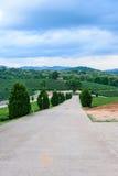 Herbaciany rolnej drogi niebieskie niebo Fotografia Stock
