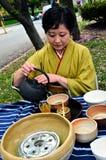 herbaciany sposób Obrazy Stock