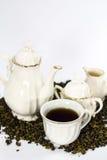 Herbaciany ustawiający na biały tle Zdjęcia Royalty Free