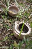 Herbaciany ustawiający na ziemi Zdjęcie Stock
