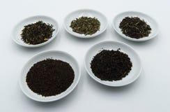 Herbaciany verde e herbaty nero obraz stock