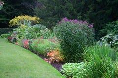 herbacious的边界 库存图片