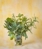 Herbage. Bunch of various fresh herbage Royalty Free Stock Photos