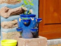 Herbage garnek Zdjęcia Royalty Free