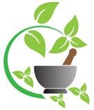 herbal illustration libre de droits