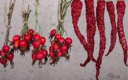 herbal photographie stock libre de droits