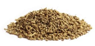 Herbal ajwain seeds Stock Photography