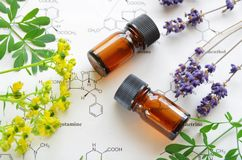 Herbal apothecary royalty free stock image