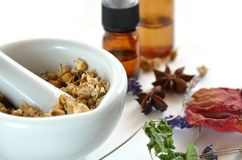Herbal apothecary. Dried herbs and essential oils for remedy Royalty Free Stock Image