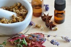 Herbal apothecary. Dried herbs and essential oils for remedy Stock Images