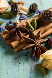 Herbal aroma composition Royalty Free Stock Photos