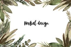 Herbal banner, leaves watercolor for spa, beauty- salon, organic shop, natural cosmetic stock illustration