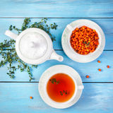 Herbal and berry tea. In the cup near teapot and thyme leaves on blue wooden background stock image