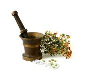 herbal,bioactive additives, medicine Royalty Free Stock Photo