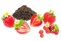 Herbal black tea with strawberry on white Royalty Free Stock Photos
