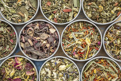 Herbal blend tea collection Royalty Free Stock Photography