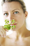 Herbal body care stock images