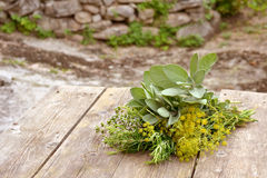 Herbal bouquet Royalty Free Stock Images