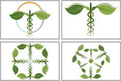 Herbal caduceus collection logos royalty free illustration