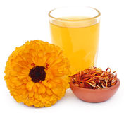 Herbal calendula flower with extract in a glass Stock Image
